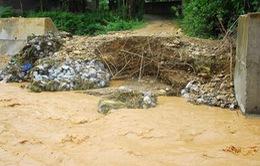 Đồng Nai hỗ trợ thiệt hại sau mưa lũ lịch sử