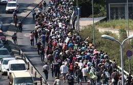 Đức tăng tiền viện trợ cho người di cư