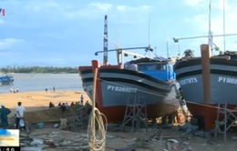 Nguy cơ xóa sổ khu đóng tàu thuyền lớn nhất tỉnh Phú Yên