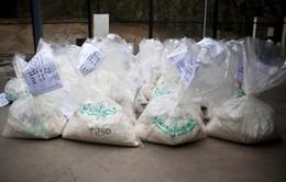 Đan Mạch kết án vụ buôn ma túy lớn nhất trong lịch sử