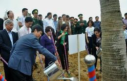 Hơn13.000 cây xanh được trồng tại khu mộ Đại tướng Võ Nguyên Giáp