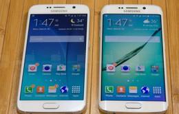 Những smartphone tốt nhất nửa đầu năm 2015