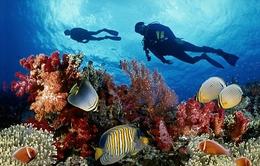 Du lịch sinh thái biển Việt Nam thu hút nhà đầu tư ngoại