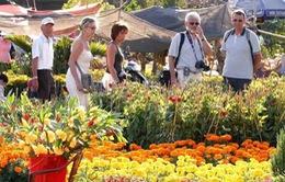 Tour du lịch nước ngoài dịp Tếttăng hơn 15% so với 2014