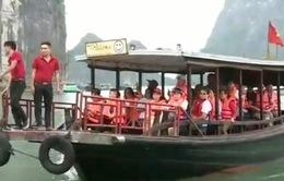 11 tháng, ngành du lịch Quảng Ninh đạt doanh thu hơn 5.900 tỷ đồng