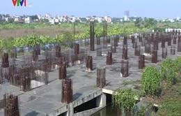 """Dự án Tricon Tower, Hà Nội: Chủ đầu tư mất tích, khách hàng """"méo mặt"""""""