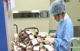 Đủ lượng máu dự trữ cung ứng cho các bệnh viện dịp Tết