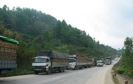 Ùn ứ 1.200 xe chở nông sản tại cửa khẩu Tân Thanh