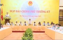 Yêu cầu làm rõ yếu tố pháp lý Dự án kè sông Đồng Nai