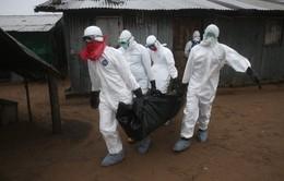 Liberia xác nhận có thêm hai trường hợp nhiễm Ebola mới