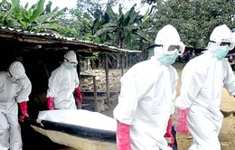 Quốc tế cam kết viện trợ các quốc gia ảnh hưởng bởi Ebola