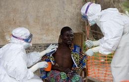 Hai bệnh nhân nhiễm Ebola cuối cùng tại Liberia xuất viện