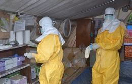 Guinea công bố hết dịch Ebola