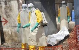"""WB viện trợ thêm 650 triệu USD cho các nước có """"ổ dịch"""" Ebola"""