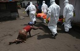 Guinea: Gia tăng các trường hợp nhiễm mới Ebola