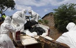 WHO cảnh báo cuộc chiến chống Ebola chưa kết thúc