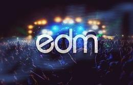 Việt Nam - Điểm đến hấp dẫn của dòng nhạc EDM