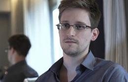 Nghị viện châu Âu yêu cầu EU chấm dứt truy nã Edward Snowden
