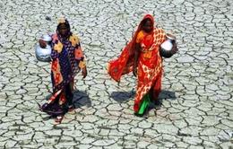 El Nino đe dọa an ninh lương thực tại châu Phi