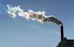 Việt Nam đang đứng thứ 31 thế giới về phát thải khí nhà kính
