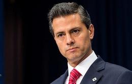 Mexico cam kết điều tra toàn diện vụ 43 sinh viên mất tích