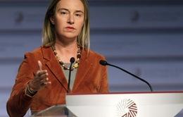 EU tăng cường hợp tác với các quốc gia Đông Âu