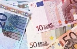 Đồng Euro giảm chưa ảnh hưởng nhiều đến xuất khẩu của Việt Nam