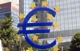 Đồng Euro giảm mạnh nhất trong vòng 2 tháng
