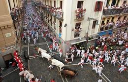 Tây Ban Nha: Tưng bừng lễ hội bò tót San Fermin