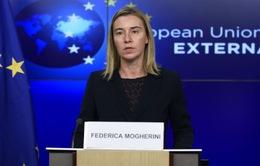 Mỹ và EU tìm giải pháp cho cuộc xung đột giữa Israel và Palestine