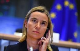 Đại diện đối ngoại EU ấn định thời gian thăm Cuba