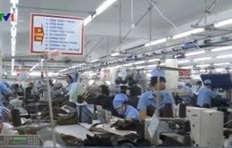 EVFTA sẽ tạo lợi thế cho Việt Nam trong ASEAN