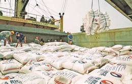 Xuất khẩu gạo qua biên giới Lào Cai được khôi phục