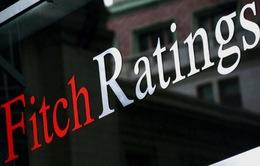 Fitch Ratings nhận định tích cực về triển vọng kinh tế Việt Nam