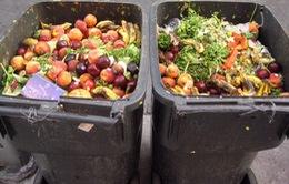 Tại sao hàng vạn tấn thức ăn vẫn bị bỏ phí?