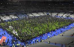 LĐBĐ Anh khẳng định trận giao hữu với Pháp sẽ diễn ra bình thường