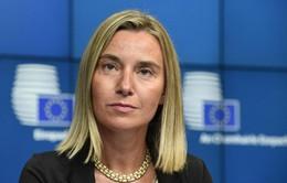 EU kêu gọi Mỹ dỡ bỏ cấm vận Cuba