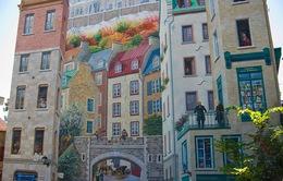 Những bức tranh tường đánh lừa thị giác ở thành phố Quebec