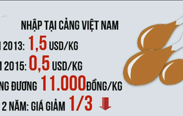 Thịt gà ngoại giá rẻ đe dọa ngành chăn nuôi trong nước