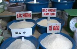 'Thông tin gạo làm bằng nhựa không có căn cứ'