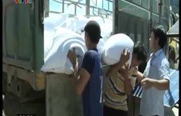Quảng Nam: Đưa gạo dự trữ lên vùng cao trước mùa mưa lũ