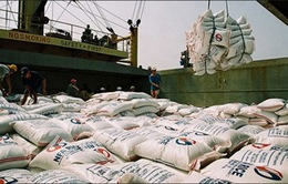 Hoàn thành thu mua tạm trữ 1 triệu tấn quy gạo