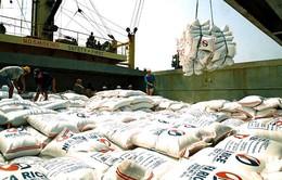 Sản lượng gạo Việt Nam xuất khẩu liên tục giảm