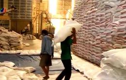 Gỡ khó tạm thời cho gạo Việt Nam