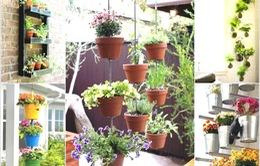 Những decor vườn treo sáng tạo cực dễ
