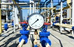 Nga nối lại cung cấp khí đốt cho Ukraine