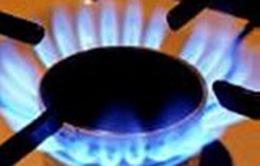 Quý I, nhập khẩu xăng dầu và khí đốt tăng mạnh