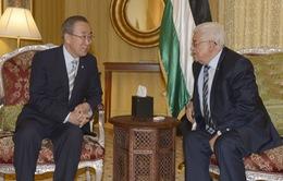 Tổng Thư ký LHQ tìm kiếm giải pháp hòa bình cho Israel và Palestine