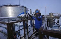Đức làm trung gian giải quyết nợ giữa Ukraine và Nga