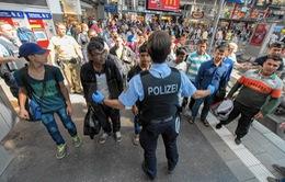 Đức áp dụng trở lại Hiệp định Dublin với người tị nạn Syria